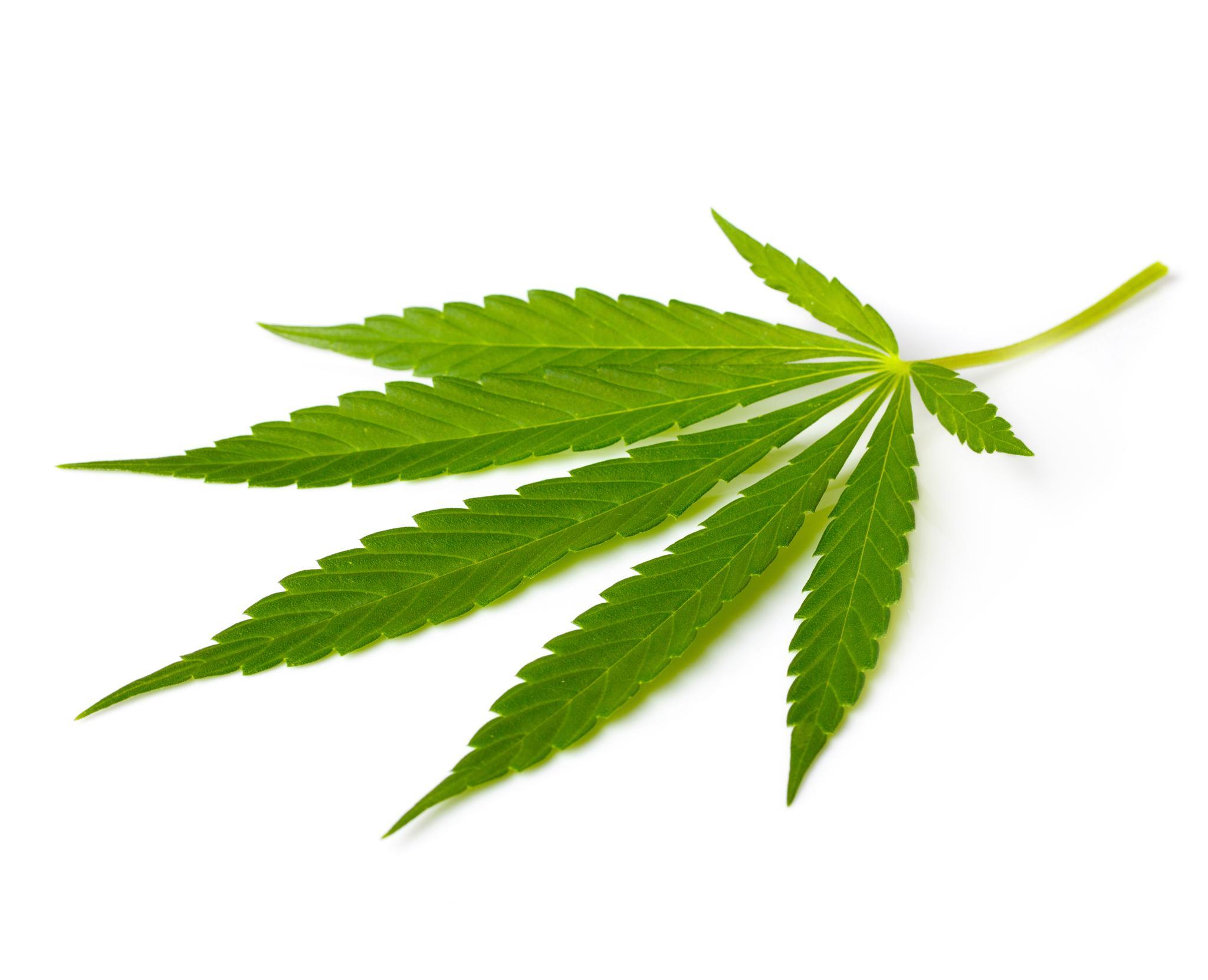 Kannabis Oireet